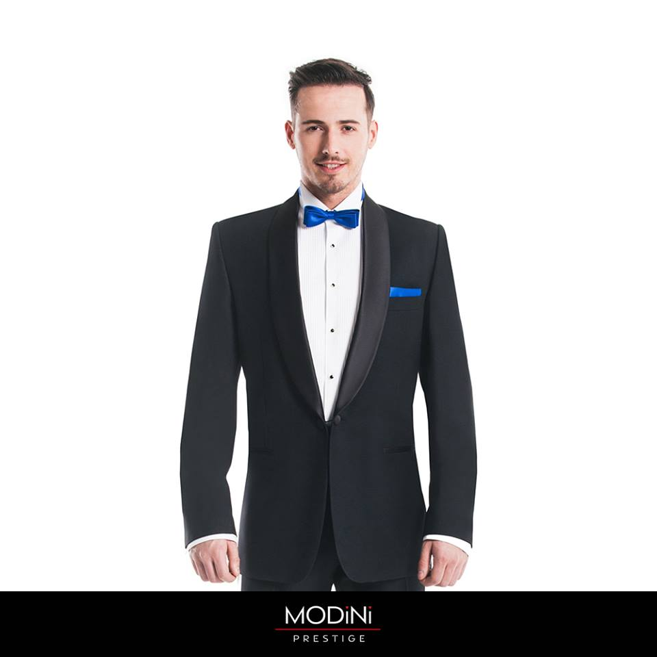 Modini Collection  2017