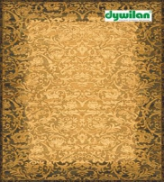 DYWILAN SA Collection  2013