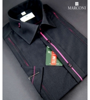 Marconi Collection  2015